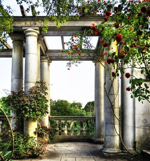 Superb Pergola And Columns With Climbing Roses And Vines ~ Heavenly