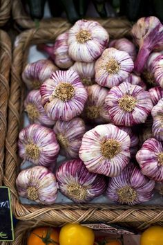 Garlic Bulbs in French food market...| DonalSkehan.com