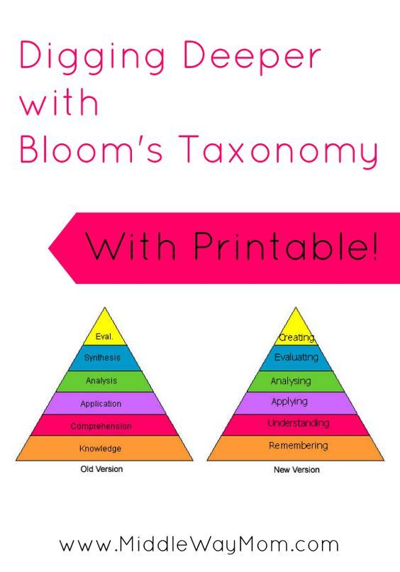 blooms taxonomy pyramid essay Bloom's taxonomy so what exactly is this thing called bloom's taxonomy, and why do education people keep talking about it well, bloom was the head of a group in.