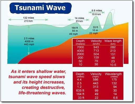 tsunami after effects mac crack