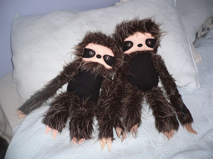 Seth and Sophies sloths.