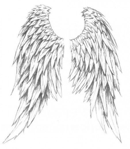 If I was ever brave enough to get a full back tattoo, this would be it! Angel wings ♡