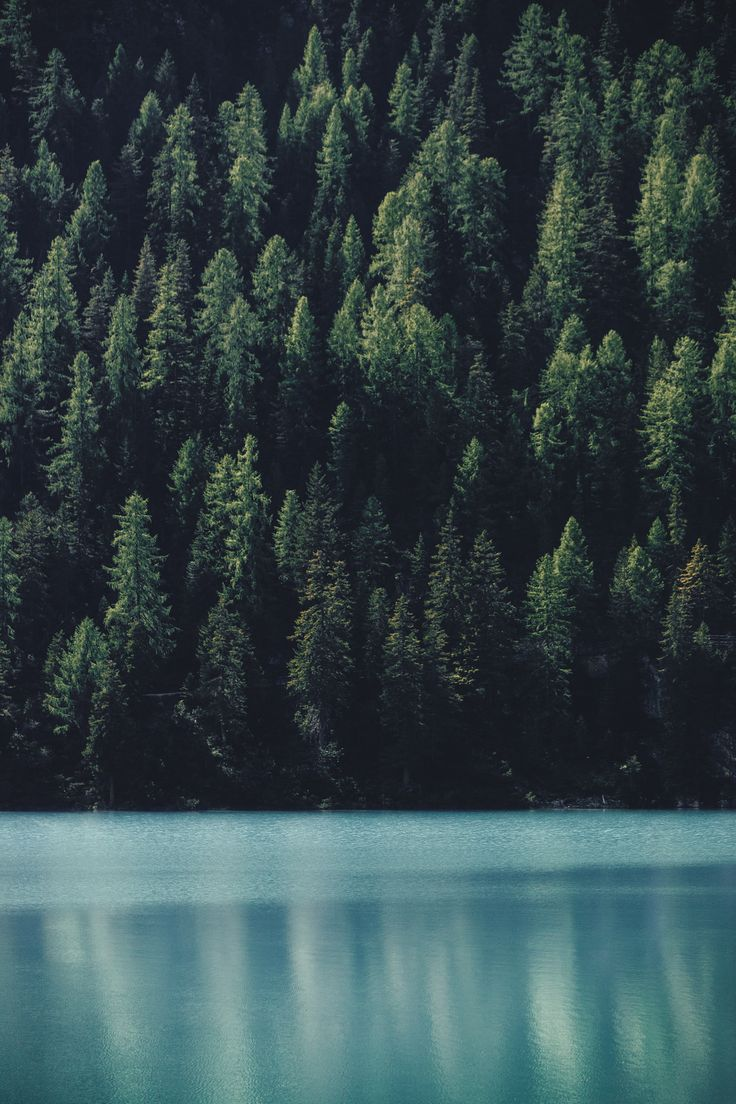 tentcamp:  elenamorelli: { green and turquoise }   I love this photo so fucking much..