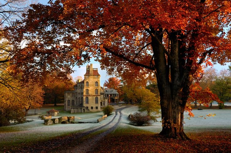 Top Spots to View Fall Foliage in Philadelphia