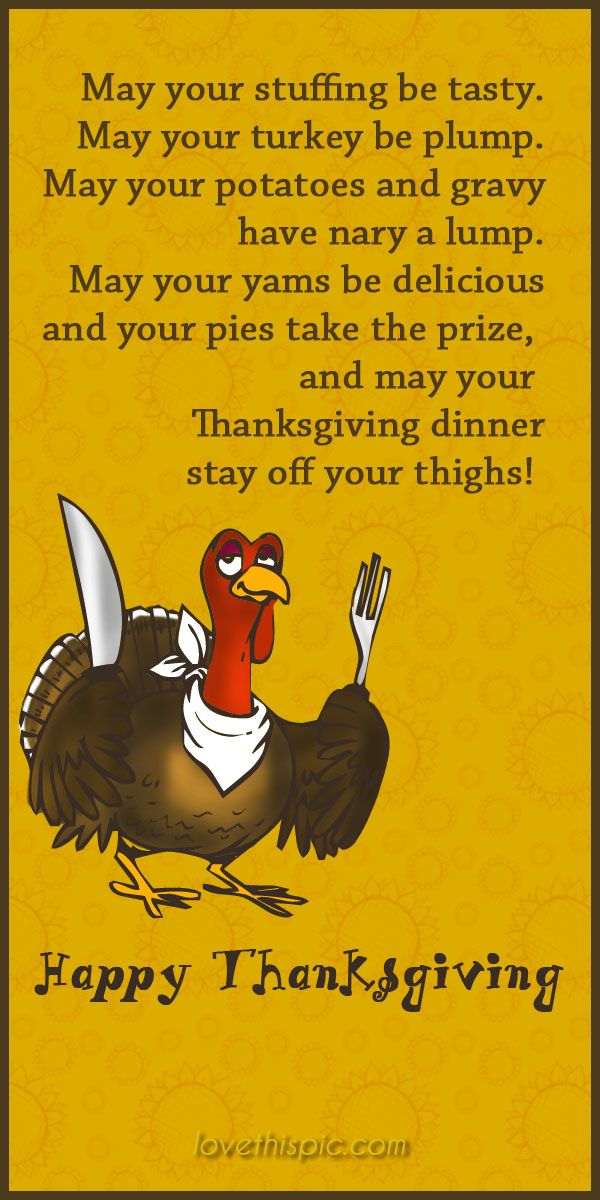 Thanksgiving  funny holiday lol thanksgiving humor pinterest pinterest quotes blessings thanksgiving quotes turkey day