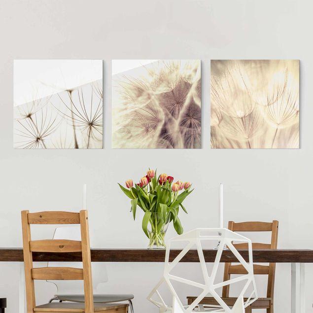 Glasbild Mehrteilig Pusteblumen Und Graser 3 Teilig Wandbild Glas Glasbilder Wandbilder Glas Wandbild Kuche