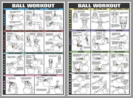 swiss ball workout wall charts two poster combo bodybuilding instructional fitness gym. Black Bedroom Furniture Sets. Home Design Ideas