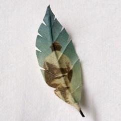 Puuranders.nl verwerkt op een prachtige manier foto's op textiele bladeren.