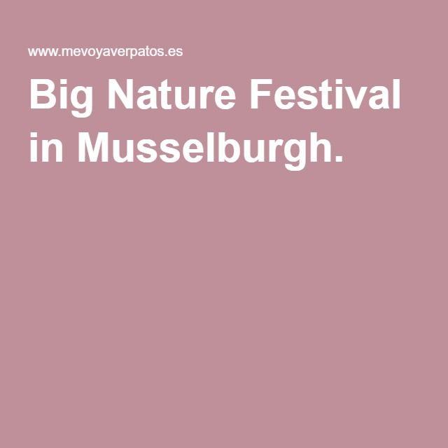 Big Nature Festival in Musselburgh.