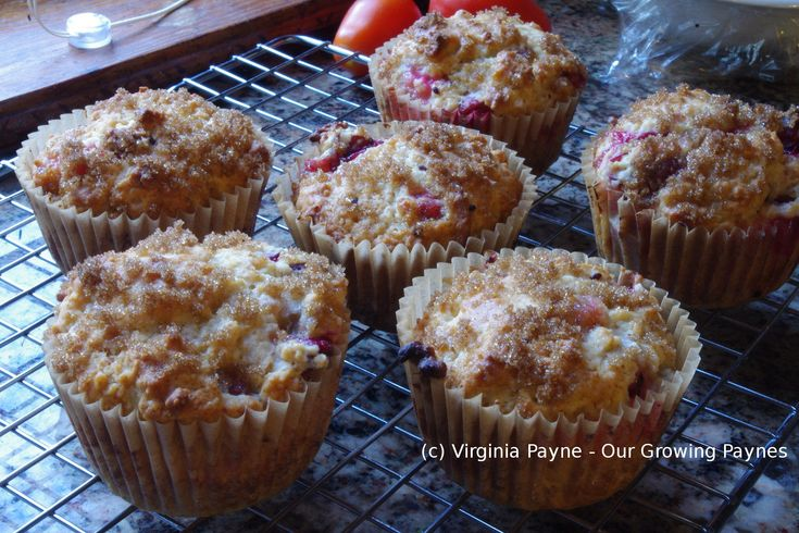 Gooseberry Muffins by Our Growing Paynes