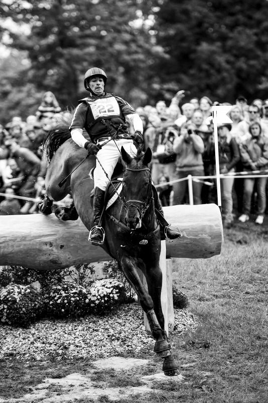 252 Best Eventing Images On Pinterest Horses Show