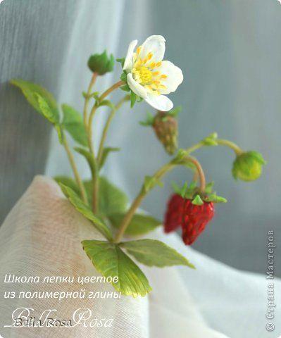Флористика искусственная Лепка Земляника из полимерной глины Глина фото 6