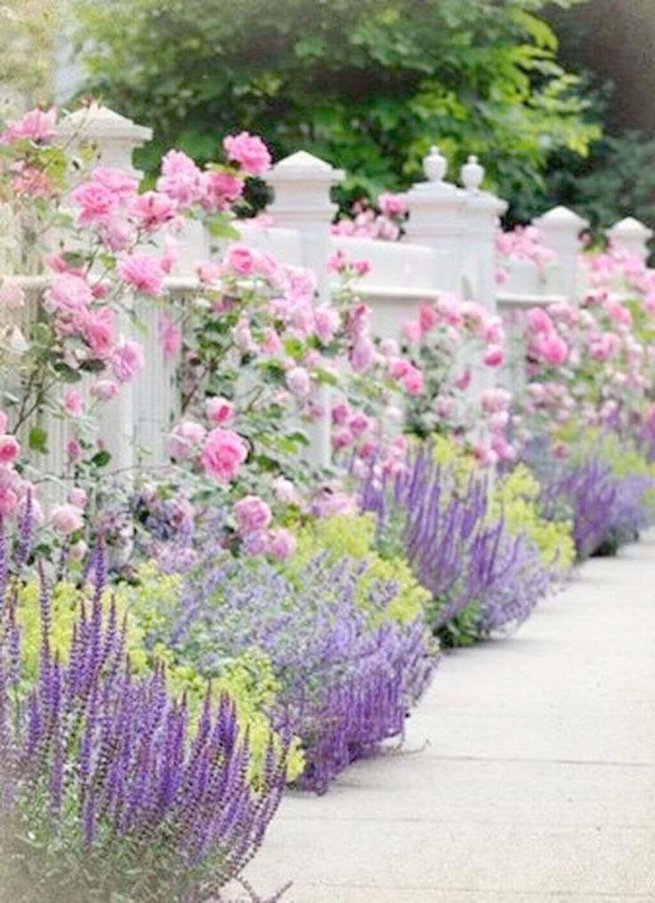 Backyard Landscape Design Tool Little Backyard Landscape Design Plants Up Backya Small Front Yard Landscaping Flower Garden Design Beautiful Flowers Garden