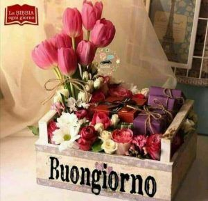 177 best images about buongiorno on pinterest tes happy for Buongiorno divertente sms