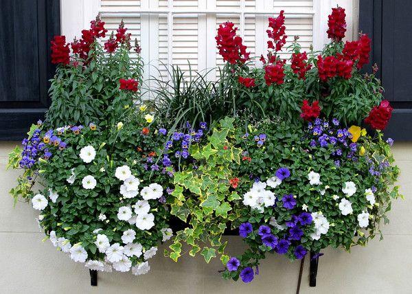 17 besten blumenk sten f r meine terrasse bilder auf pinterest balkon balkon pflanzen und. Black Bedroom Furniture Sets. Home Design Ideas