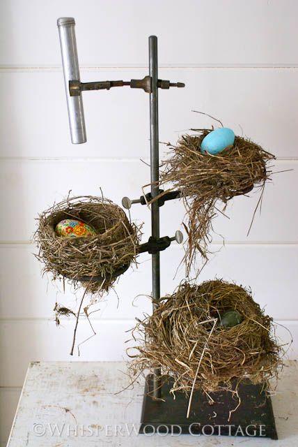 Bunsen Burner Nest Display