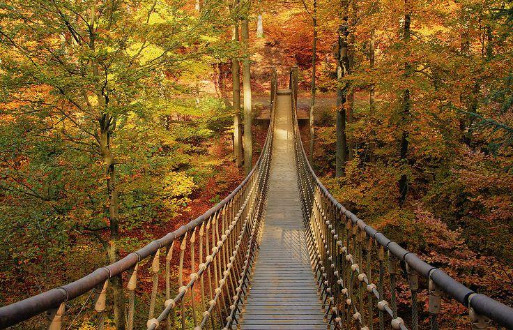 Willst du mit wandern??? Rothaarsteig (7) von Grazyna Boehm
