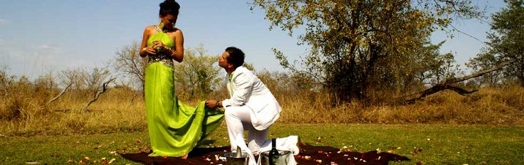 Luxury Safari Wedding | Sabi Sabi