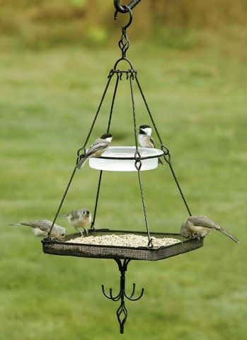 different bird-feeders to attract different birds. this one looks interesting to try to make.