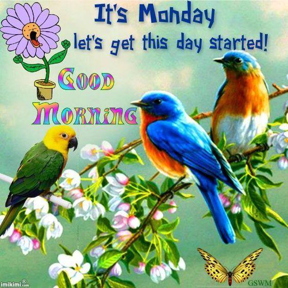It's Monday Good Morning