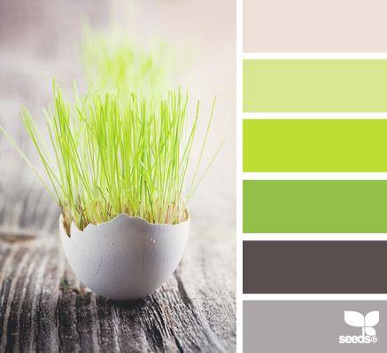 easter sprung--{ =:x } Color Palette - Paint Inspiration- Paint Colors- Paint Palette- Color- Design Inspiration