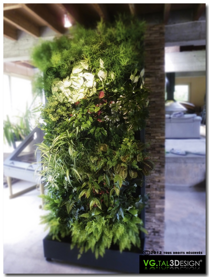146 best images about muros verdes on pinterest - Mur vegetal interieur diy ...
