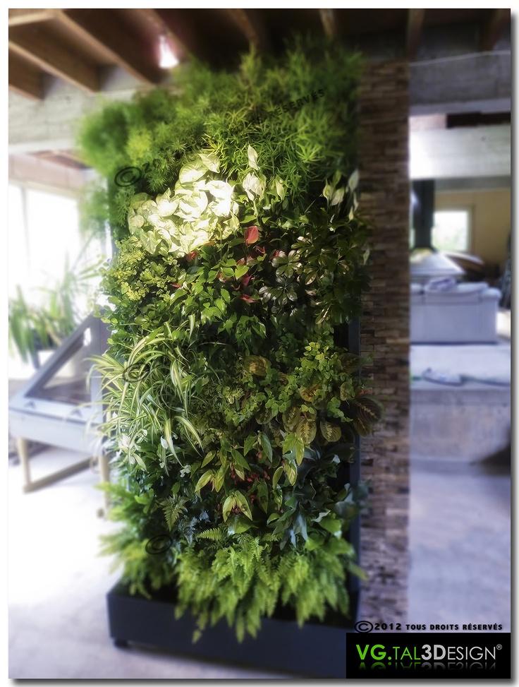 Mur v g tal modulable pour int rieur - Kit mur vegetal interieur ...