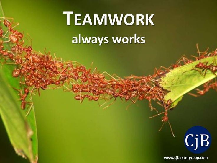 18 best Words of Wisdom - Teamwork images on Pinterest ...