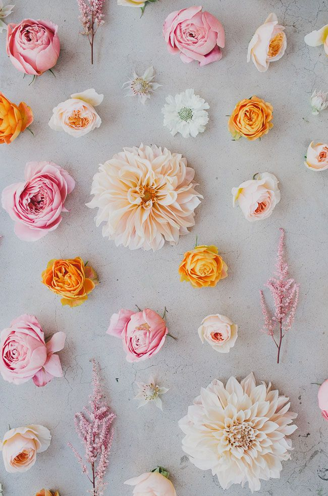 Seasonal Flower Guide: Summer | Green Wedding Shoes Wedding Blog | Wedding Trends for Stylish + Creative Brides