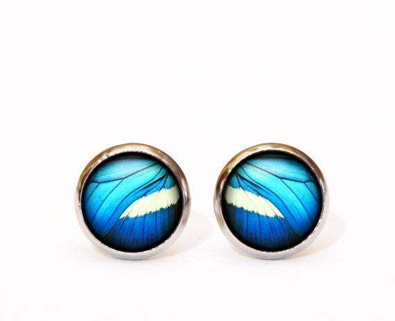 Blue Butterfly Earrings stainless steel stud earrings black