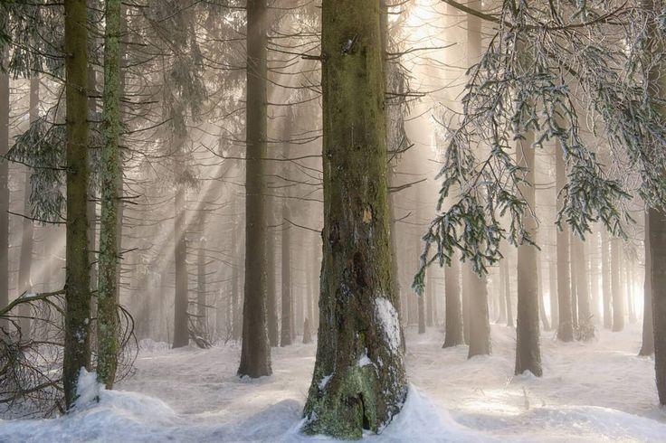 Winter Wonders II by Lars van de Goor on 500px