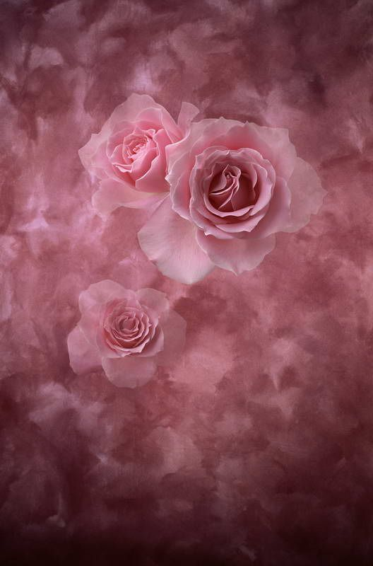 3feet-5feet Baby Newborn Backdrops Photo Studio Backgrounds Vinly Backdrops For Photography Props Beautiful Flowers Backgrounds