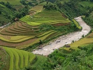 http://www.vietnamitasenmadrid.com/2011/11/sapa-vietnam.html La región de Sapa, las montañas de Vietnam y el paraiso del senderismo y trekking. Étnias Vietnamitas en Sa Pa