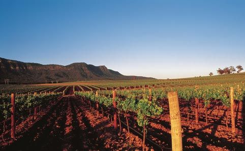 There are more than 150 wineries in Hunter, so where do you start? Here's Time Out's hit list