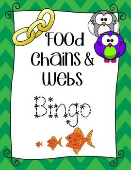 Food Chain and Food Webs Bingo Review Game!  Food Chains Vocabulary review game: - consumer, producer, decomposer, herbivore, carnivore, omnivore, primary consumer, secondary consumer, tertiary consumer, energy, energy pyramid, population, autotrophs, heterotrophs, sun, predator, prey, fungi, scavenger.