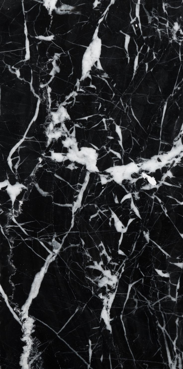 "4"" x 8"" Marble Field Tile in Black Marble wallpaper"