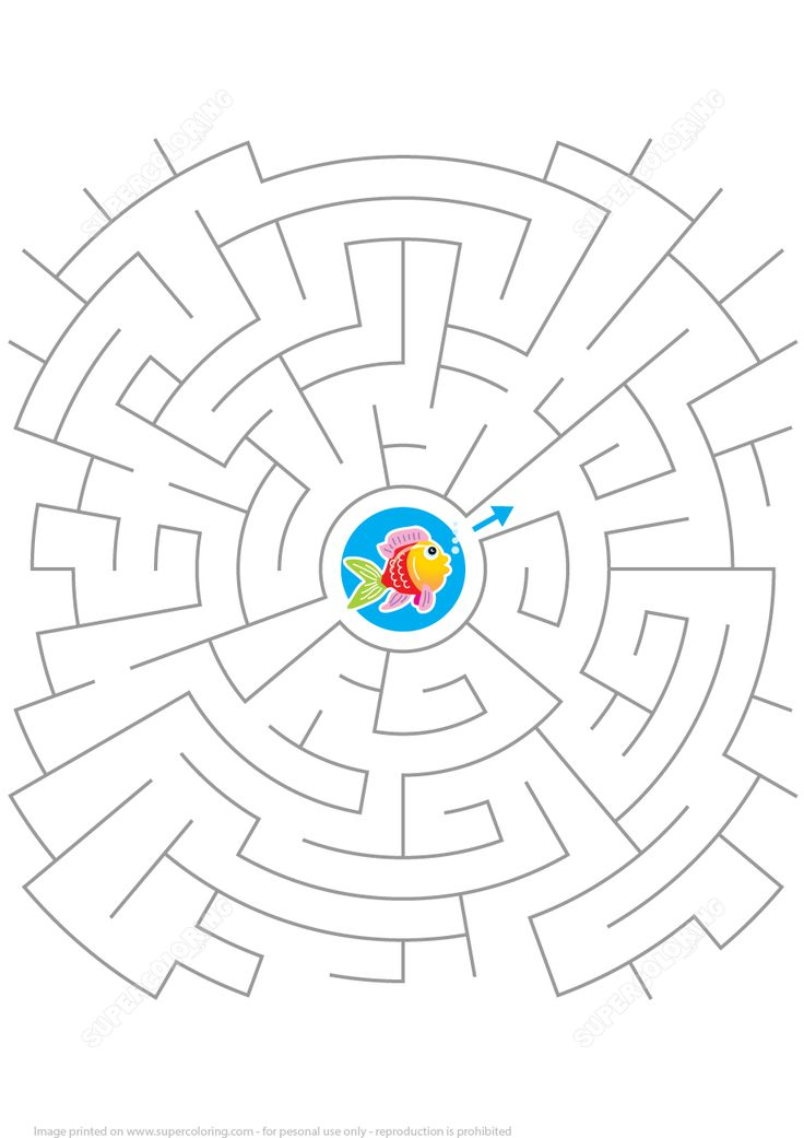 Help the Little Fish to Get out of the Labyrinth Puzzle | Super Coloring
