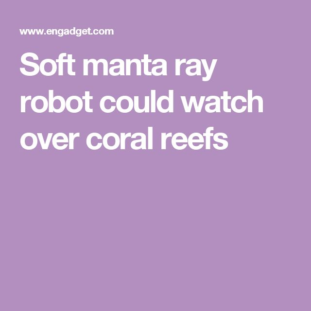 Soft manta ray robot could watch over coral reefs