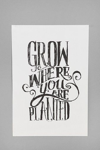 Matthew Taylor Wilson for Society6 Grow Where You Are Planted Art Print: Wall Art, Urban Outfitters, Favorite Quote, Taylors Wilson, Plants Art, Art Prints, So True, Plants Prints, Matthew Taylors