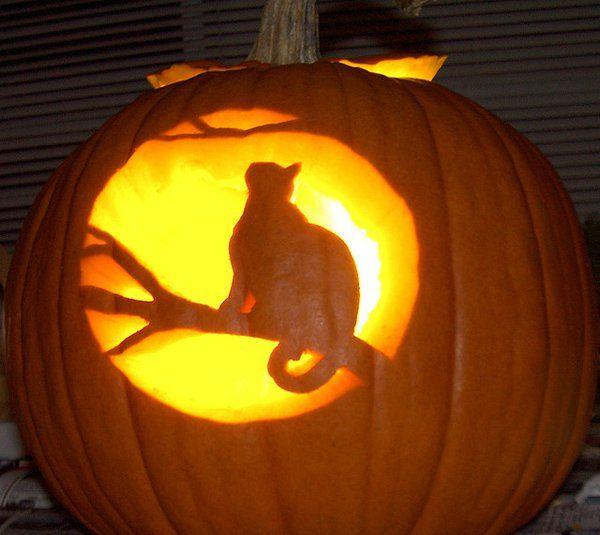 17 Best Creative Pumpkin Carving Ideas On Pinterest