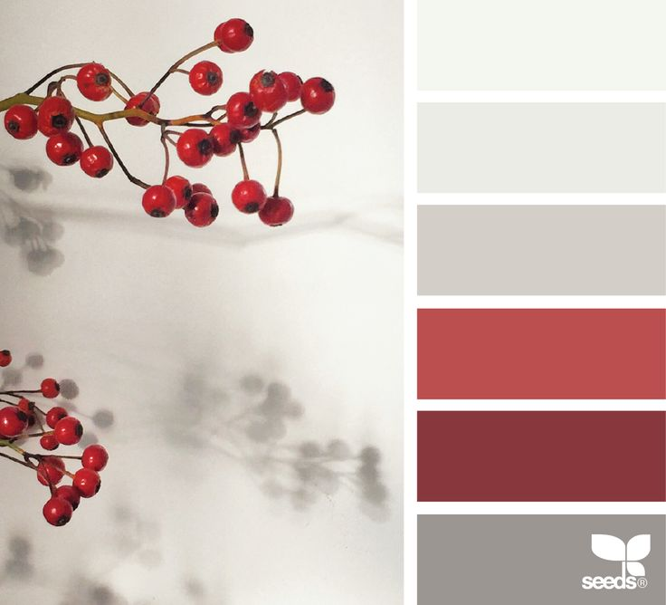 Palette Search: Winter Colors with white and deep red