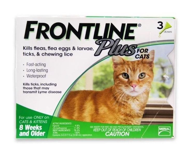 Frontline Plus for Cats Over 1 5 lbs 3 Month Supply 3 Applications | eBay