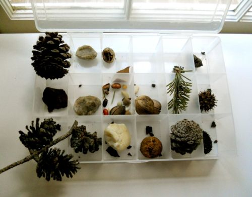 """""""Keep nature collections in top of hutch.  Set up table for current display next to hutch, hang posters on side of file cabinet.    Our Montessori Classroom: The Nature Table 