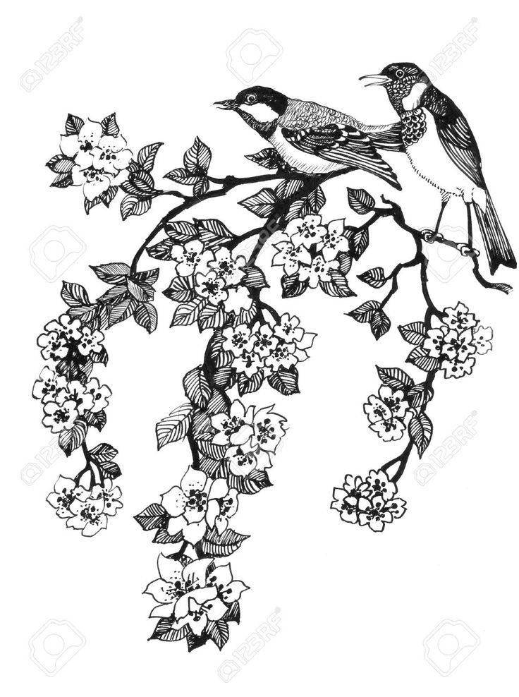 Иллюстрация птиц на ветке вишневого дерева на белом фоне