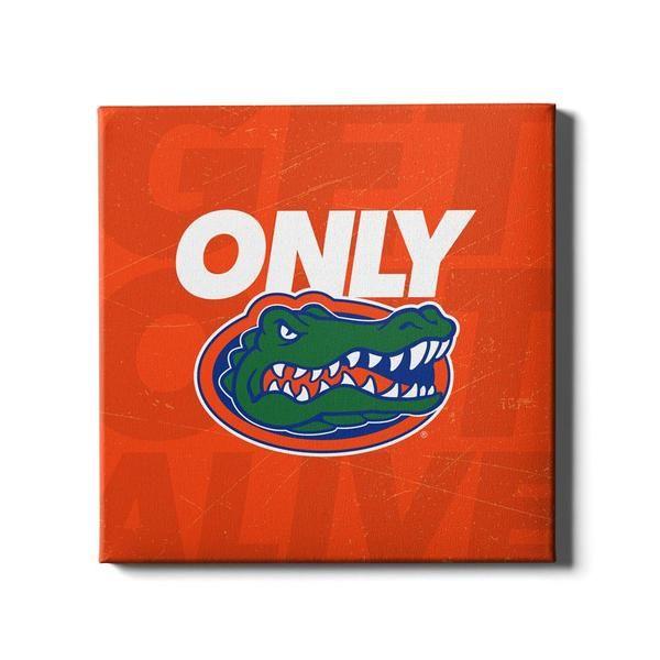Florida Gators Only Gators Orange In 2020 College Wall Art Canvas Photo Wall Wall Art Designs
