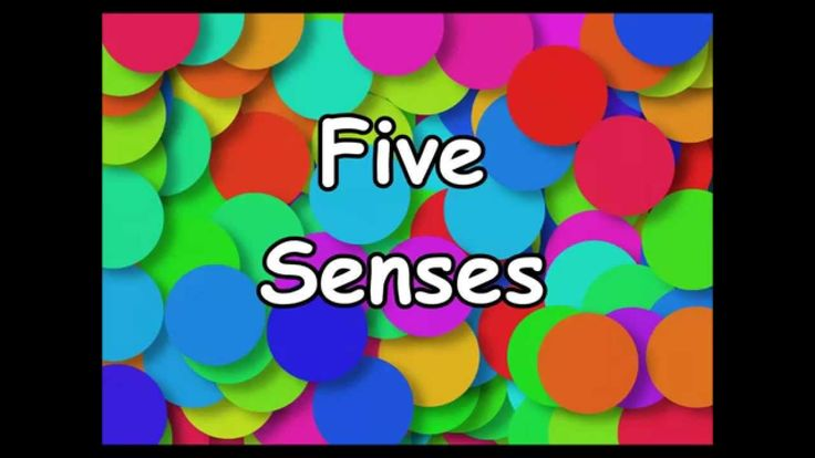 This fun and catchy sing-a-long song teaches kids the five senses. Visit http://www.sillyschoolsongs.com for more info and music! LYRICS: I see it I hear it ...