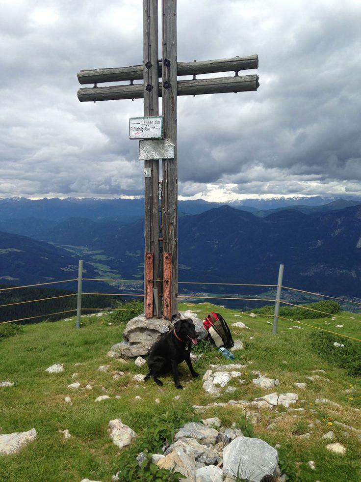 Tierische Urlaubs-Tipps & Ausflugsziele: Der Poludnig in Kärnten - Nassfeld - Österreich. Getestet & für tierisch befunden von Xenia (c) Cony Wiedenig
