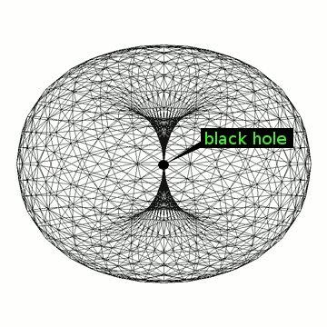 world-torus_1_.gif (360×360)