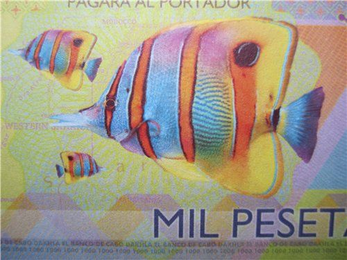 тропические рыбы Кабо Дахла (мыс Дахла) - бывший испанский колониальный форпост в Северной Африке. В настоящее время на территории Западной Сахары (Сахарской Арабской Демократической Республики), которая, в свою очередь, аннексирована Марокко.