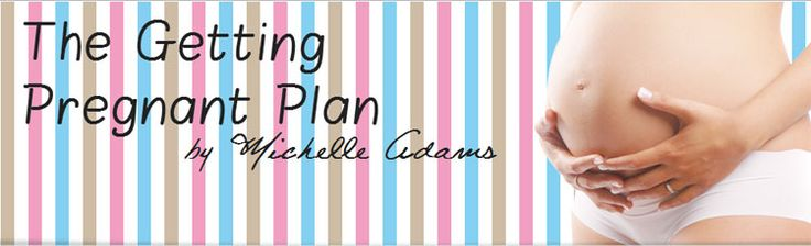"The Getting Pregnant Plan (How To Get Pregnant Fast?) -  Review on The Getting Pregnant Plan E-book by Michelle Adams. Learn to know ""How To Get Pregnant Fast?"" – The best way to get pregnant quickly and naturally.   Possibly you are simply truly willing to get pregnant, or perhaps you need your baby's introduction to the..."